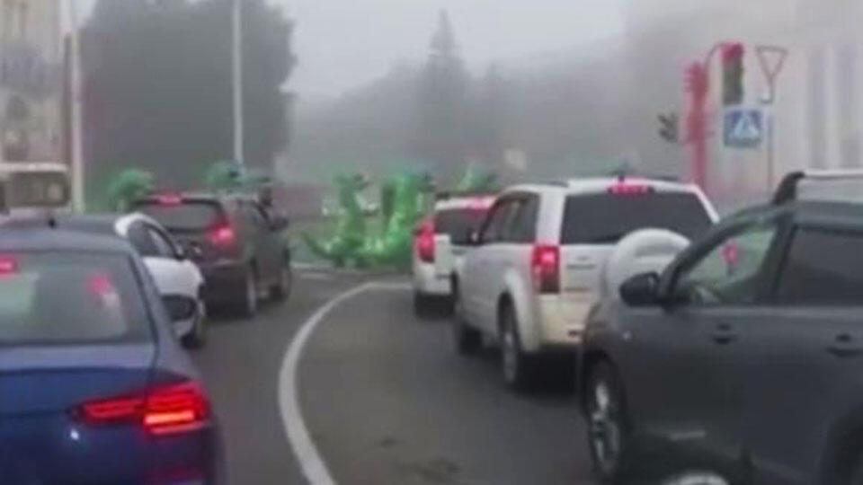 Динозавры пробежали через дорогу в Кемерове
