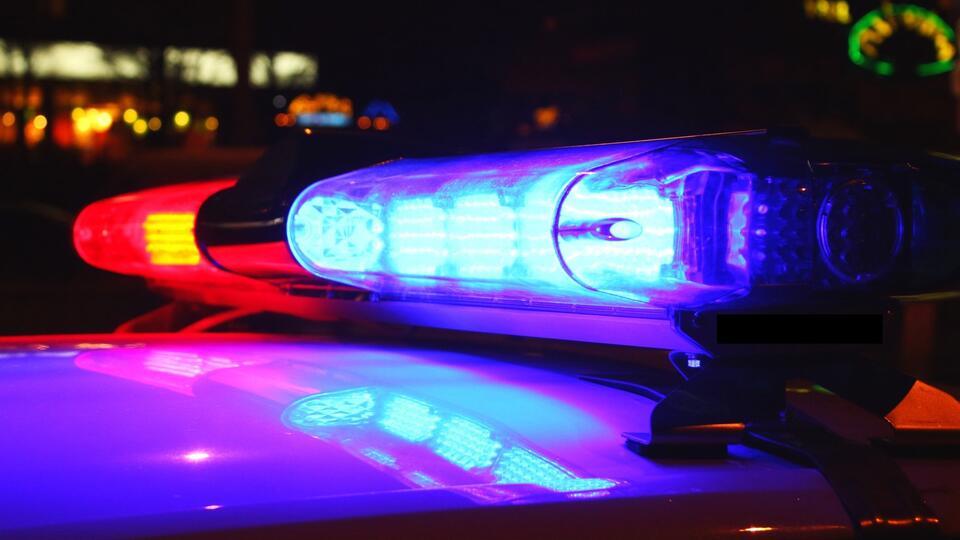 Полицейские с кинологом отыскали беглеца с COVID-19 в Благовещенске