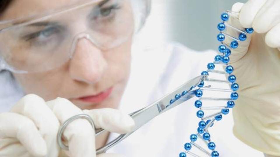 В Китае родились двойняшки с модифицированной ДНК