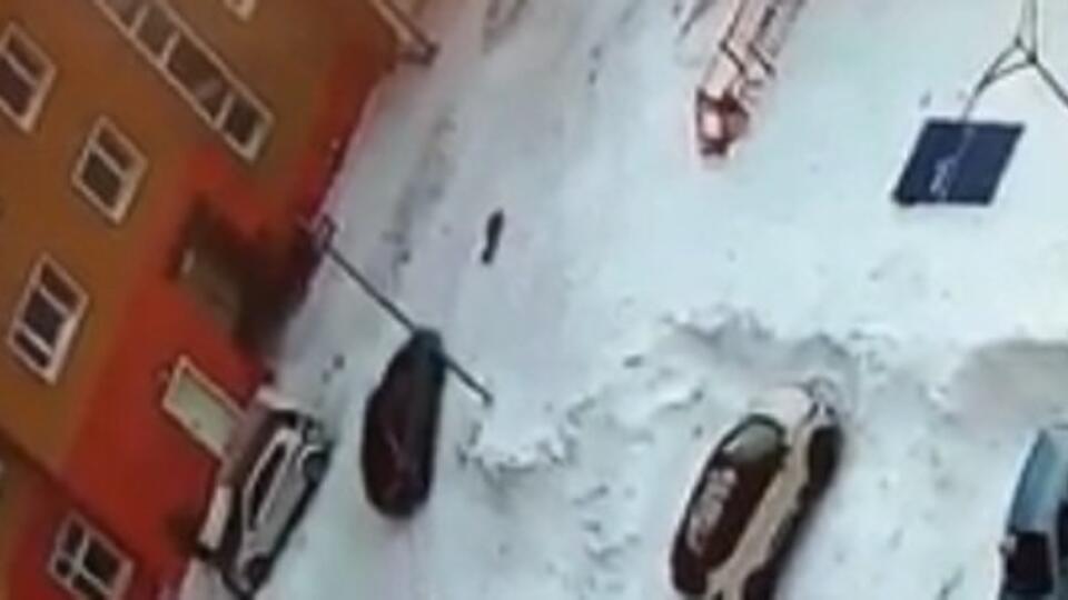 5-летнего ребенка протащили под колесами авто в Новом Уренгое