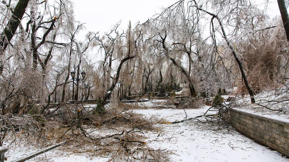 Синоптики заявили об отступлении снежного циклона в Приморье