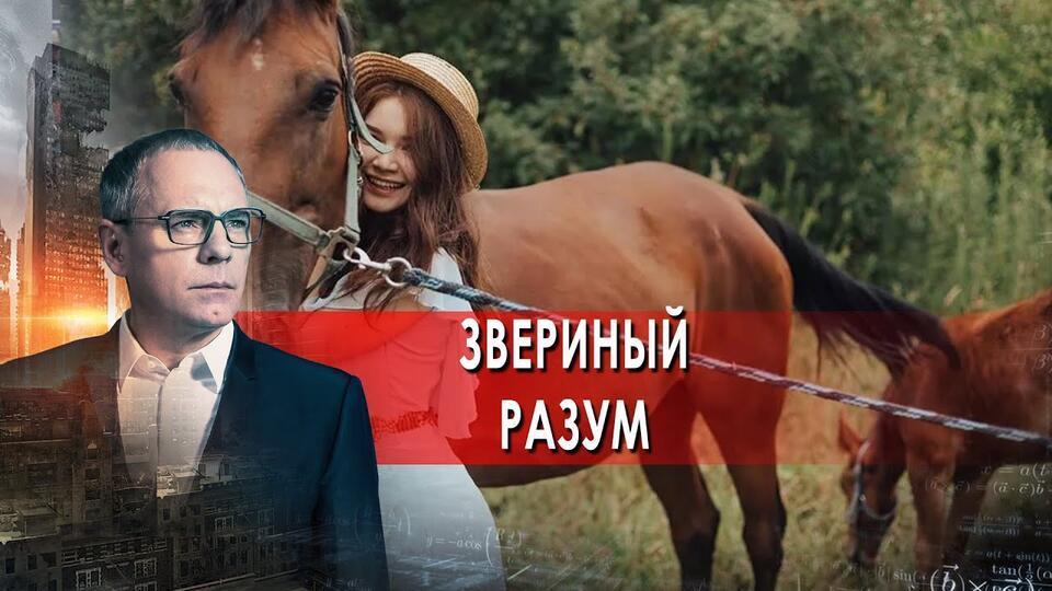 Звериный разум. Самые шокирующие гипотезы с Игорем Прокопенко (29.09.2021).