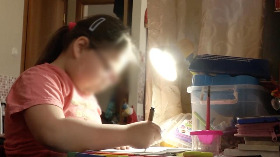 Шестилетнюю девочку судят за долги умершей матери под Новосибирском