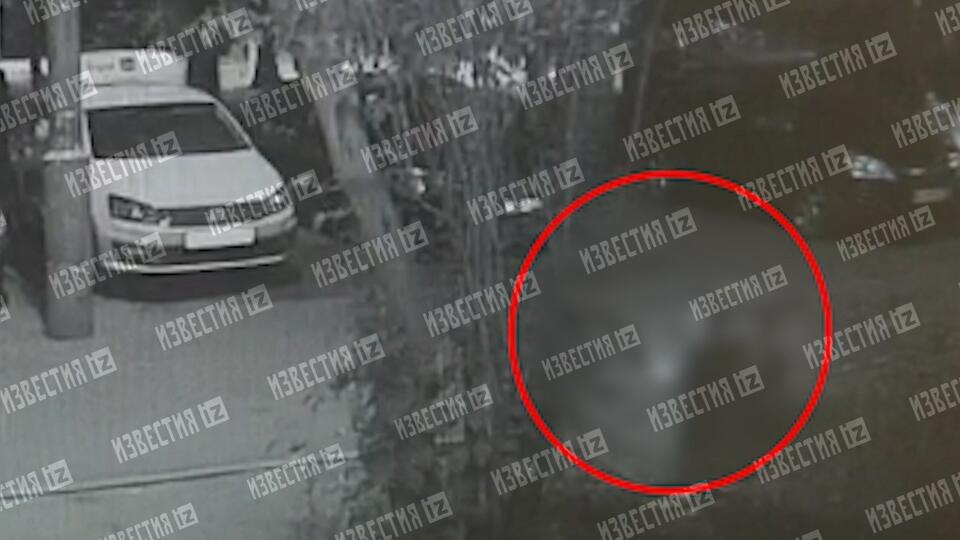 Камера сняла падение ребенка, выброшенного из окна отцом в Москве