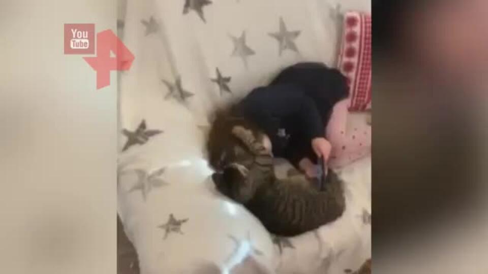 Две Девочки Лижут У Друг Друга Видео