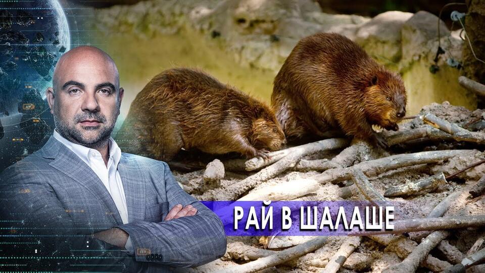 Рай в шалаше. Как устроен мир с Тимофеем Баженовым (16.02.21).