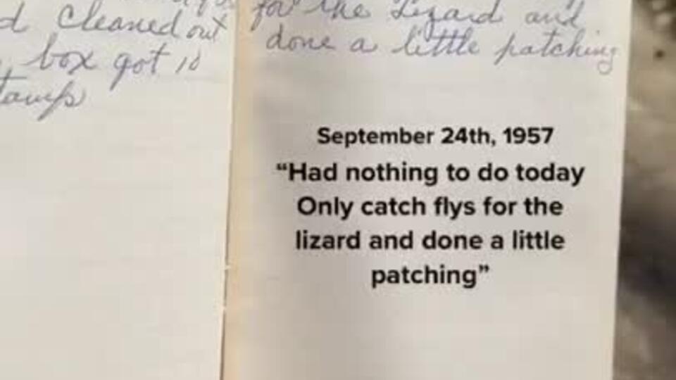 """""""Весь день ела"""": дневник домохозяйки 1957 года покорил Сеть"""