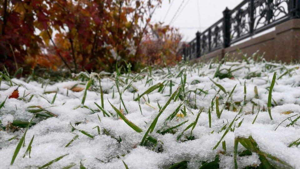 Первый снег может выпасть в Центральной России 19 октября