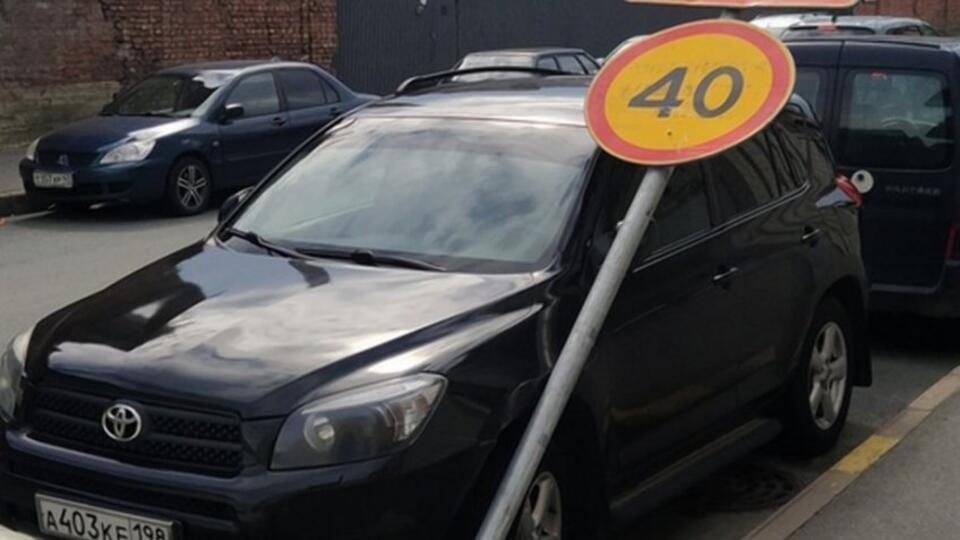 Видео: деревья и дорожные знаки падают на авто в Петербурге