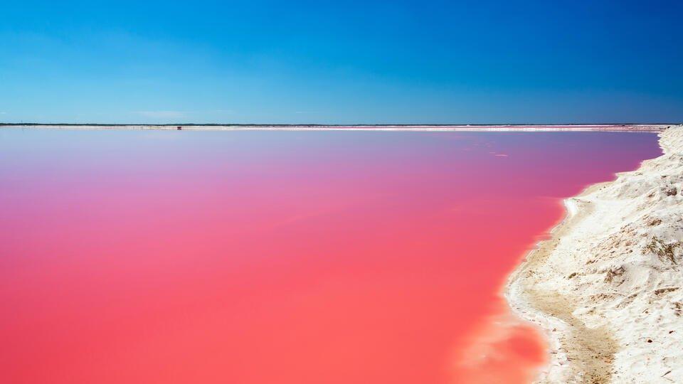 Фото: © Розовое озеро в Лас-Колорадос. Depositphotos