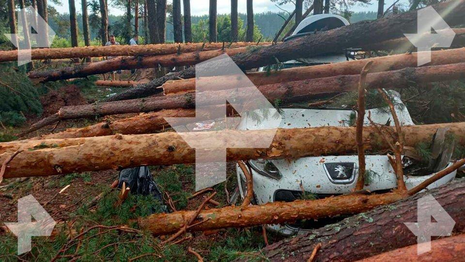 Появились новые кадры после удара торнадо в Тверской области