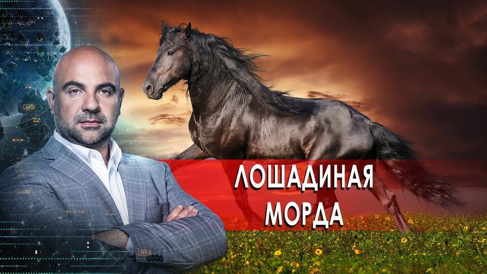 Лошадиная морда. Как устроен мир с Тимофеем Баженовым (17.02.21).
