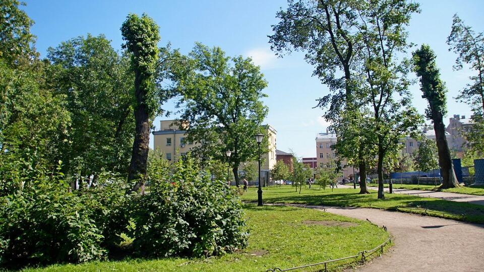 Парки и скверы Петербурга закрыли из-за штормового ветра