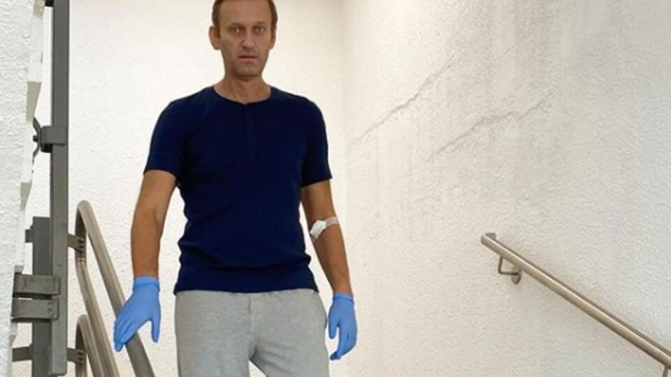 """У кабмина ФРГ нет данных, кто и как провез """"бутылку Навального"""""""
