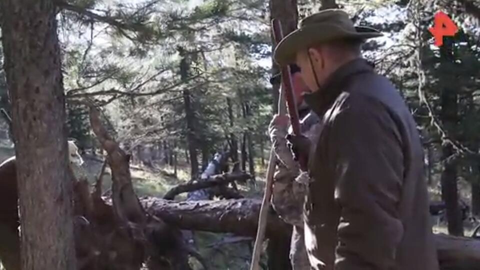 """""""Мишка спит здесь"""": Путину показали медвежью берлогу в тайге"""
