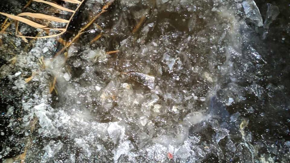 Дети увидели  вмерзший влед реки труп малыша