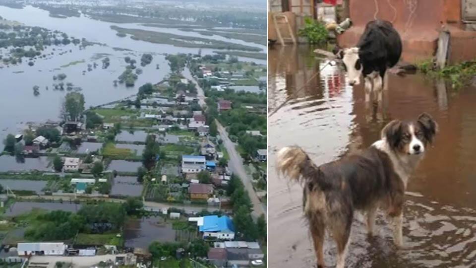 Зиничев рассказал о ситуации с паводками на Дальнем Востоке