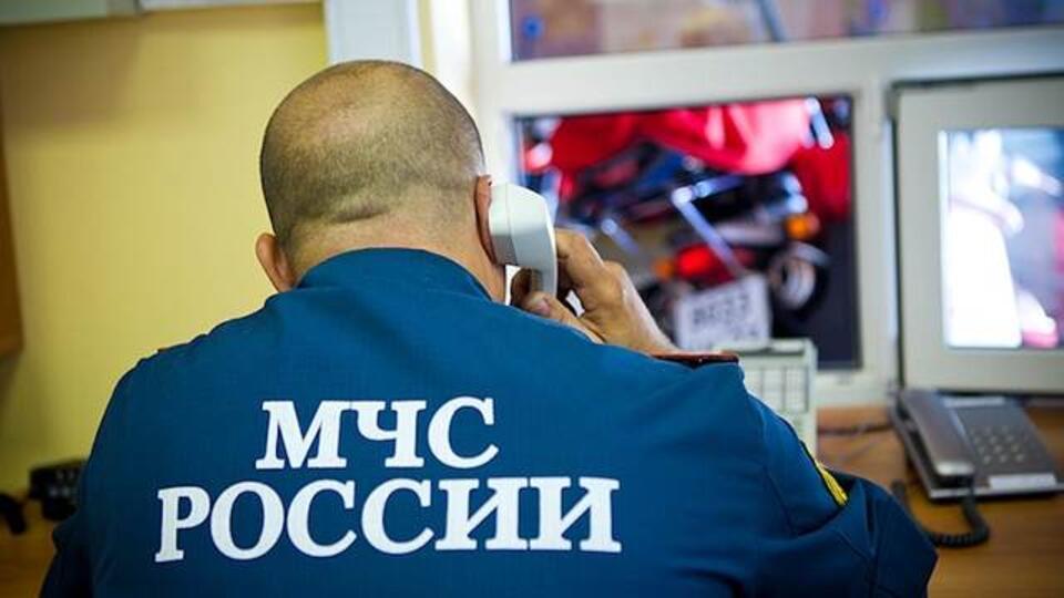 Пропавший под Москвой 10-летний ребенок-инвалид найден мертвым