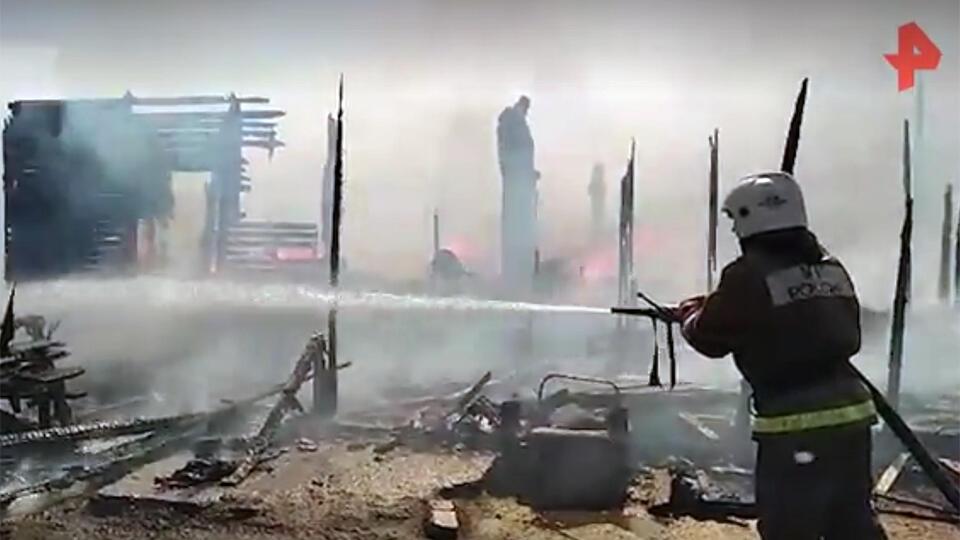 Глава МЧС назвал число сгоревших от лесных пожаров домов в 2020 году
