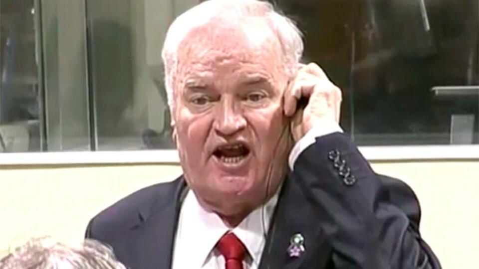 МИД РФ назвал приговор Младичу политизированным