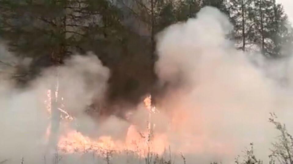 Жители Якутии пытаются отстоять дома, к которым приближаются пожары