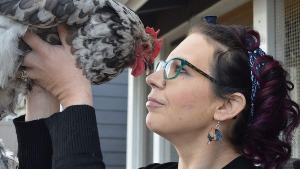 Американка заплатила $10 тыс., чтобы спасти жизнь любимой курице