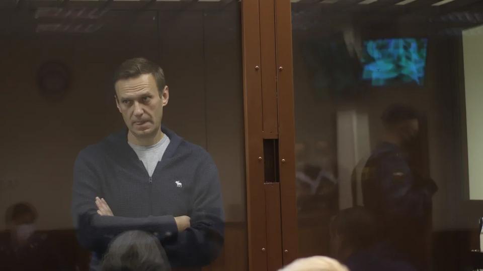 Шоу оппозиционного хама: приговор Навальному сочли слишком мягким