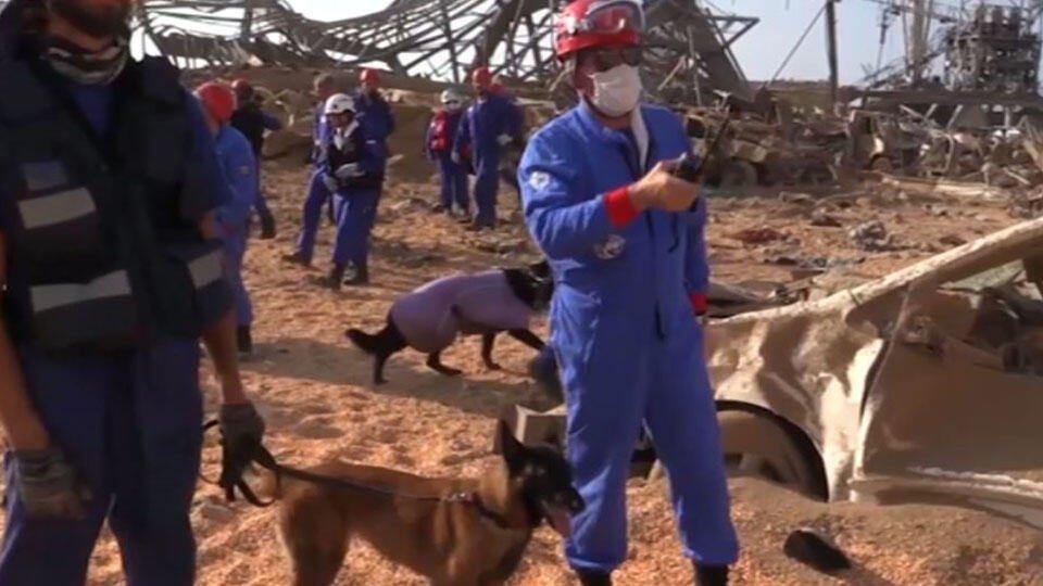 После взрыва в Бейруте не удалось опознать 17 погибших