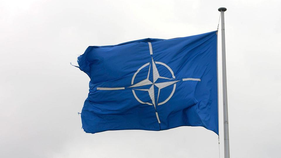 В НАТО желают взять под контроль новые виды вооружений с ИИ