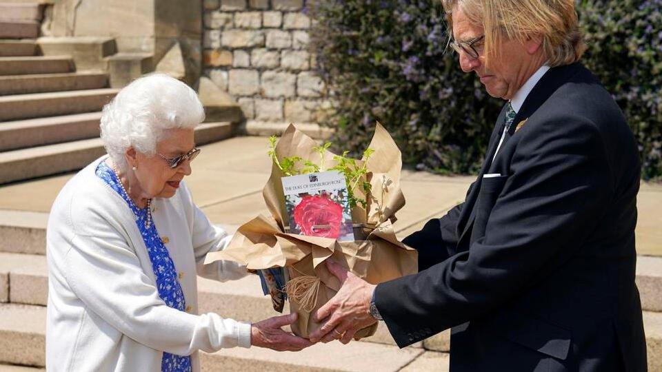 Елизавета II посадила новый вид роз, названных в честь принца Филиппа