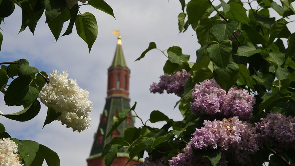 Названы самые популярные у россиян города для отдыха весной