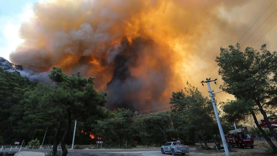 В Турции задержан подозреваемый в поджоге леса