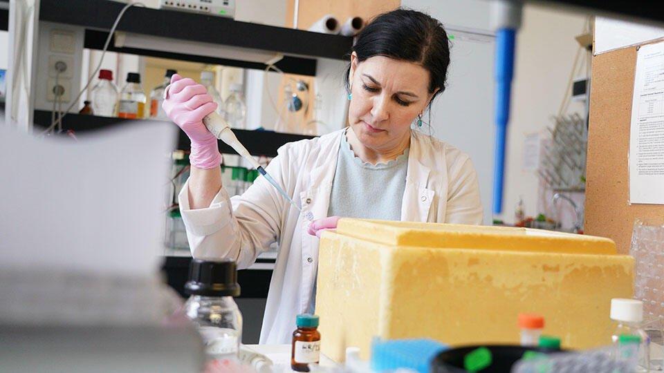 Найден новый способ попадания коронавируса в легкие