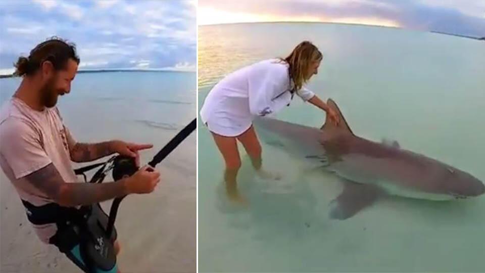 Рыбак выловил опаснейшую акулу и дал погладить ее своей девушке