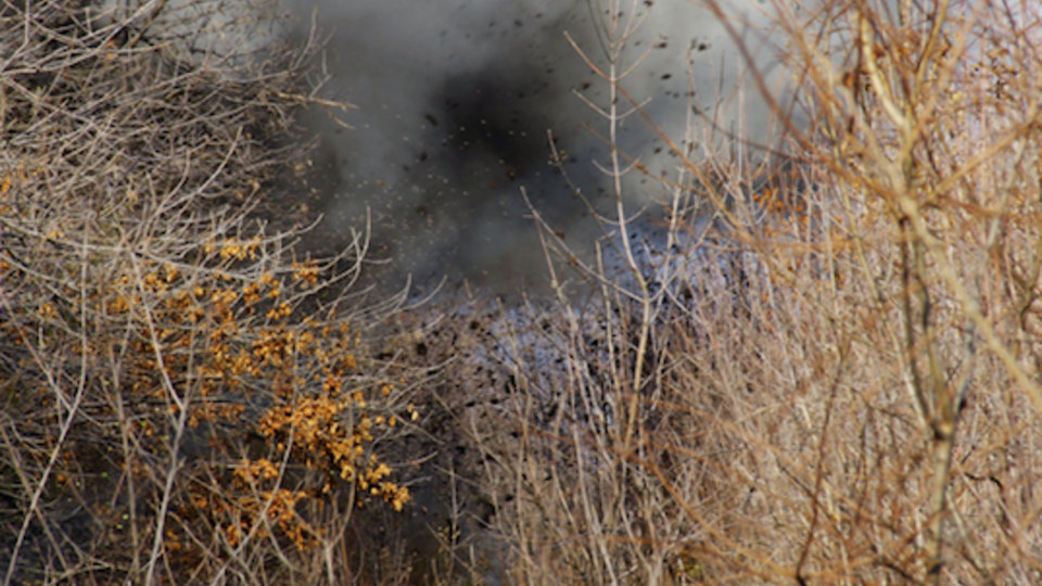 Украинские военные подорвали собственный склад боеприпасов в Донбассе