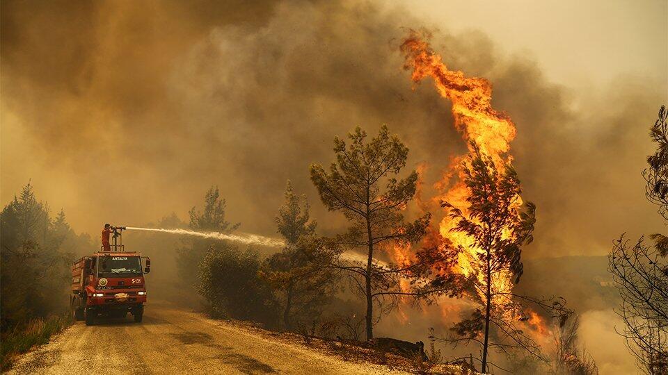 Не курорт, а выжженная пустыня: кому выгодно погрузить Турцию в пепел?