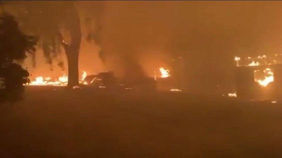 Площадь лесных пожаров в Калифорнии возросла почти до 500 тыс. га