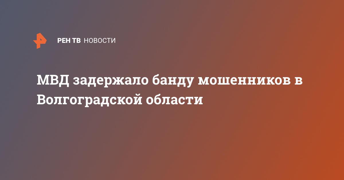 МВД задержало банду мошенников в Волгоградской области